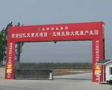 宁晋玉锋集团违规占地 三位退伍军人亲人尸骨难寻