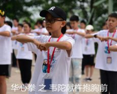 华人拳心武术文化招式之华心拳